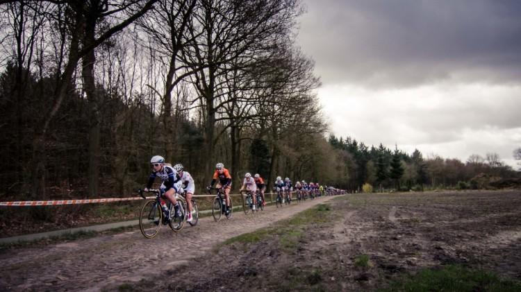 Ronde-van-Drenthe-4-1050x590-2
